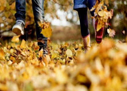 O que Fazer no Outono Sem Gastar Muito Dinheiro